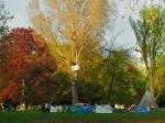 Tent cities S21